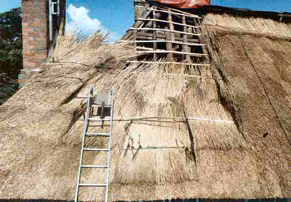 How To Build A Thatch Roof