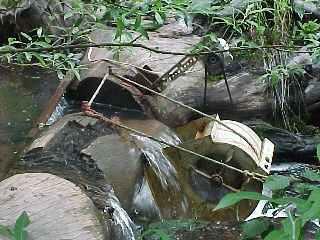 مولد عجلة المياه باستخدام مروحة قفص السنجاب